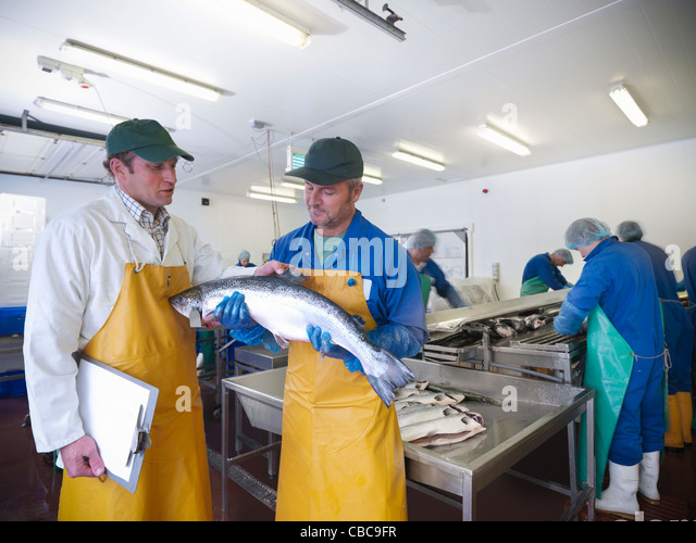 Fishmongers with catch of the day - Stock Image