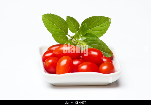 Fresh tomatoes and a sprig of basil on a white background. - Stock Image