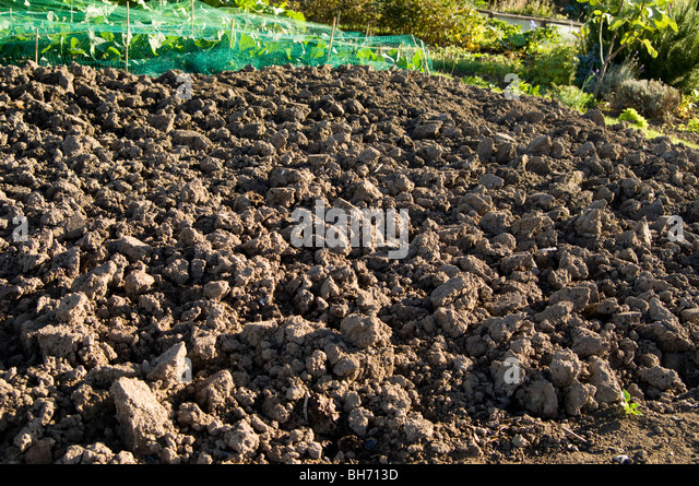 Soil improver stock photos soil improver stock images for Soil improver