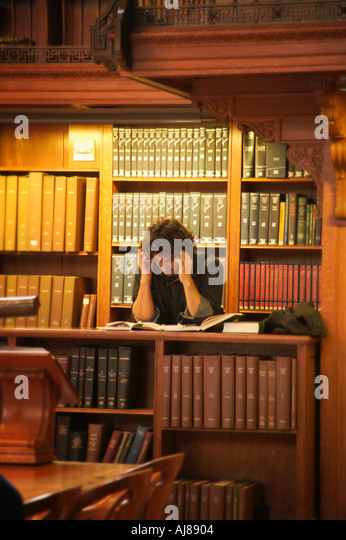 the new york public library stock photos the new york public library stock images alamy. Black Bedroom Furniture Sets. Home Design Ideas
