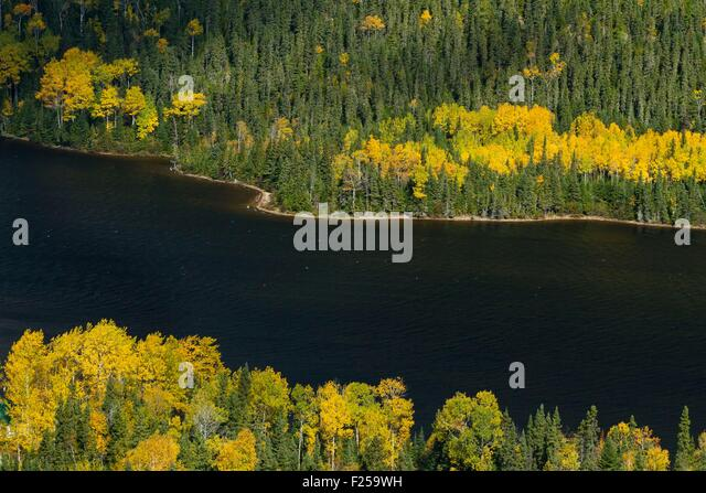 Canada, Quebec province, Saguenay Lac Saint Jean, Lac des Ha! Ha!, Lake and forest in autumn - Stock Image
