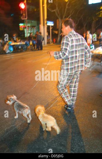 China Shanghai Huangpu District Sichuan Road Asian man dog dogs leash pets walking night - Stock Image