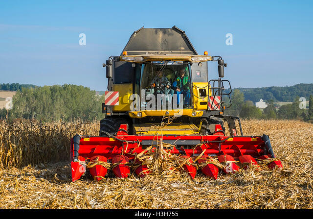 New Holland CR9080 combine harvesting maize - sud-Touraine, France. - Stock Image