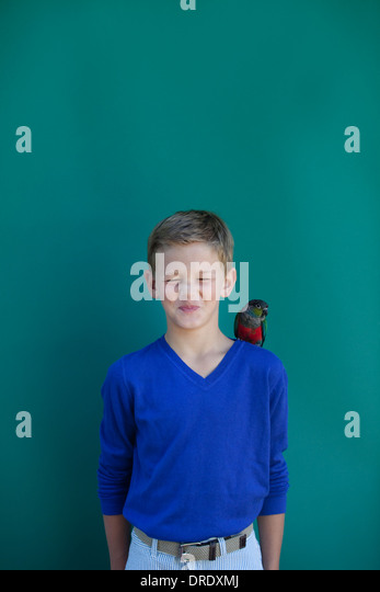Young boy with pet parrot on shoulder - Stock-Bilder