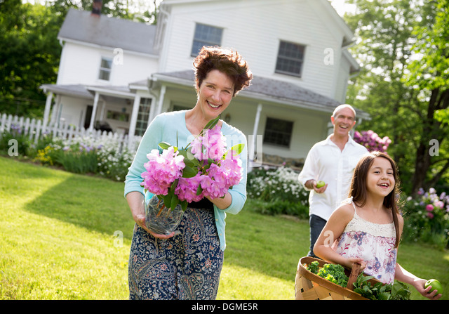 Family party. Parents and children walking carrying flowers, fresh picked vegetables and fruits. Preparing for a - Stock-Bilder