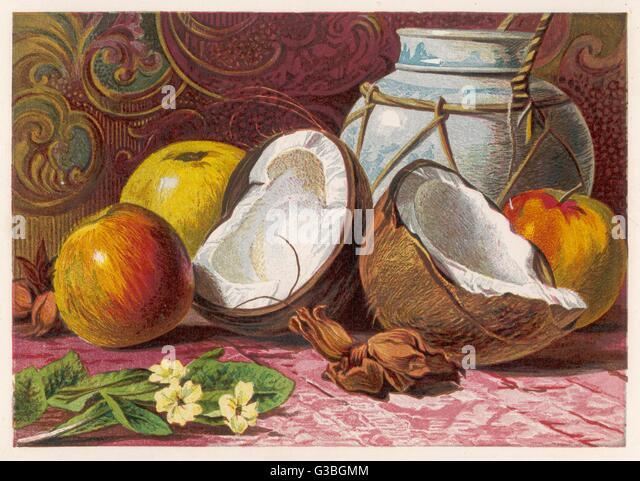 A still life showing a  coconut - split in half and some apples.       Date: 1861 - Stock Image