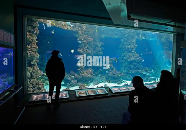 Vistor Stock Photos Vistor Stock Images Alamy
