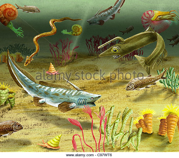 Cretaceous Period Fish Stock Photos Amp Cretaceous Period