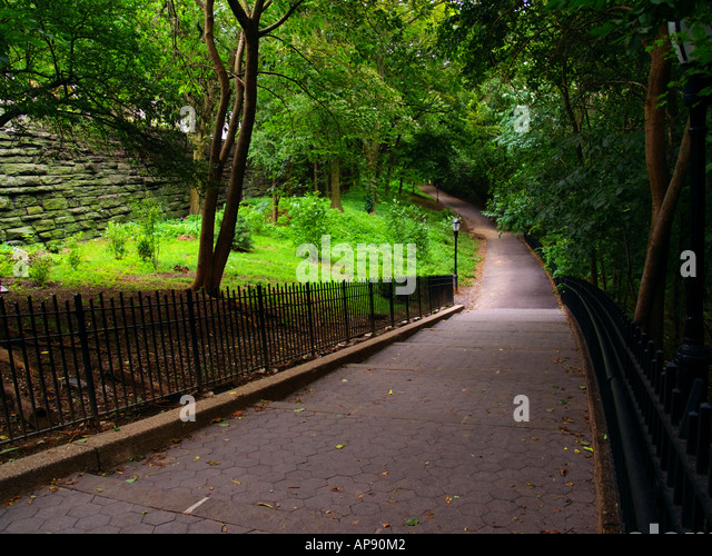 green path into the - photo #45
