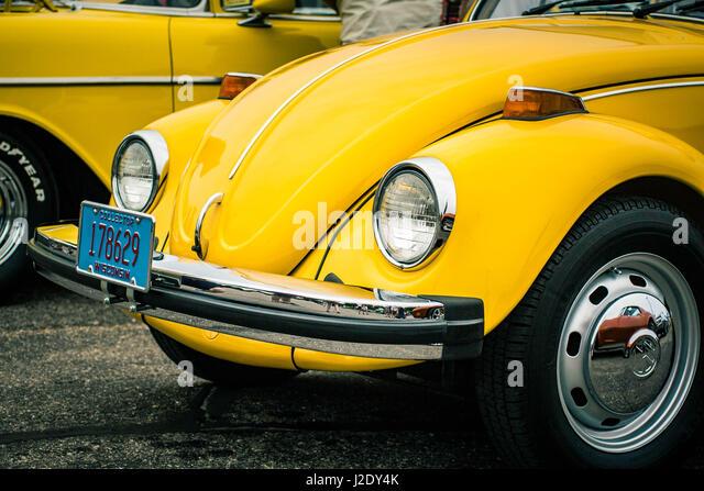 YellowBug1561   - Stock Image