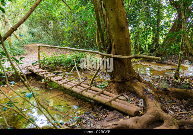 how to build a small bridge over a stream