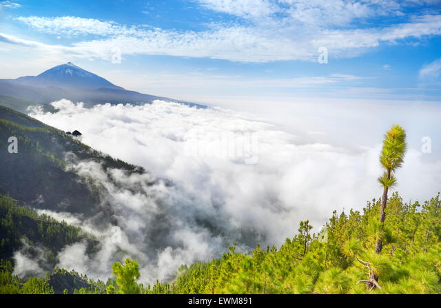 Tenerife - Teide Volcano Mount above sea of clouds, Canary Islands, Spain - Stock-Bilder