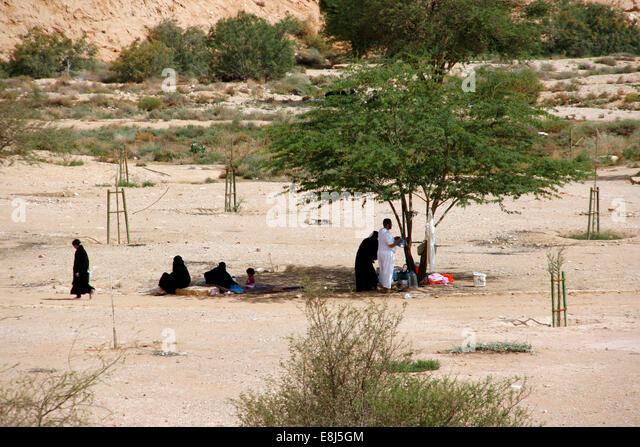 Locals having picnics under the shade of the trees in the Wadi Hanifa, near Riyadh, Saudi Arabia - Stock Image