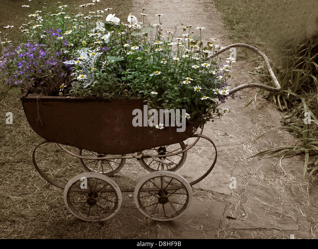 An old pram planted with flowers, Lymm Festival 2011, Warrington, Cheshire, England, UK - Stock Image