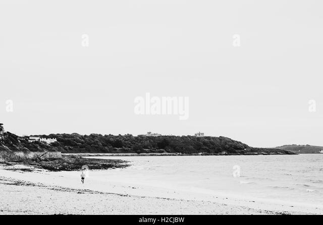 High contrast photograph of wild swimmer emerging from the sea at Gylyngvase Beach, Falmouth, Cornwall - Stock Image