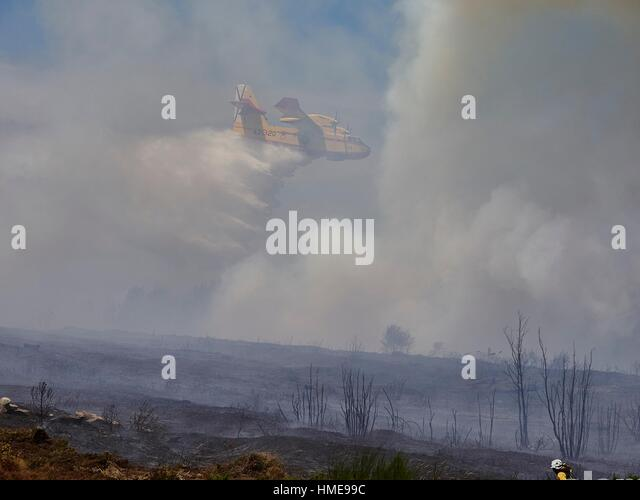 Seaplane performing a risky maneuver to drop water on forest fire. Province of Lugo, Galicia, Spain (July 2015) - Stock Image