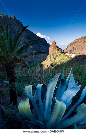 The village of Masca, Tenerife, Canary Islands, Spain. - Stock Image