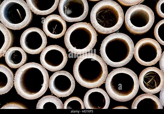 Wooden Cylinder Patterns - North Carolina, USA - Stock Image