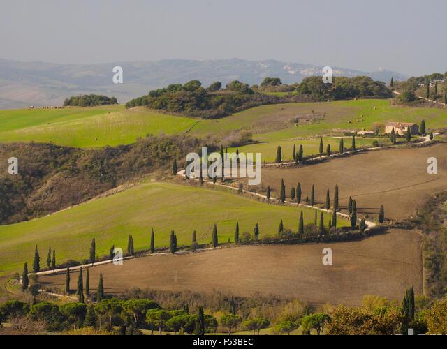 Europe, Italy, Tuscany.  Zig zag road near La Foce in Tuscany. - Stock-Bilder