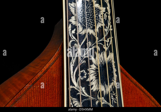 Detail from a seven-string bass viola da gamba with inlaid fingerboard and tailpiece - Stock Image