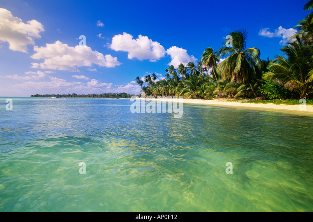 Beautiful water with a nice white sand beach and Palm Trees Punta Cana in the Dominican Republic - Stock Image