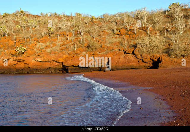 Rabida Island also called Jervis Island with deserted red beach and cliffs due to high iron content,  Galapagos - Stock Image