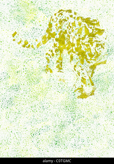 Relief of Leopard on Green Backgrounds - Stock-Bilder