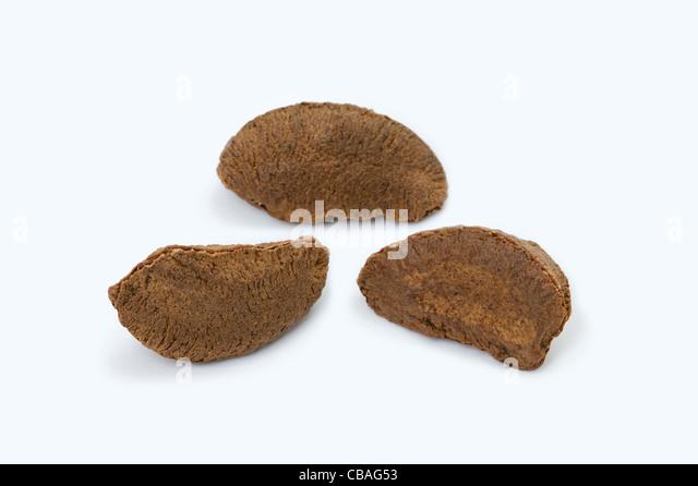 three brazil nuts cutout - Stock Image