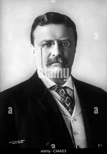 The works of theodore roosevelt as the 26th president of the united states