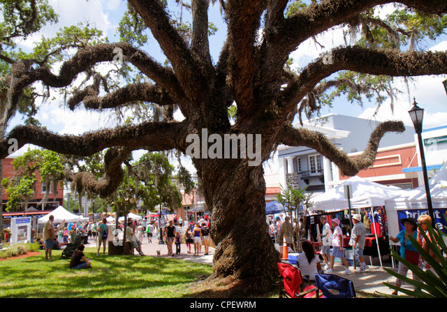 Florida Brooksville Florida Blueberry Festival annual event Main Street live oak Spanish moss - Stock Image