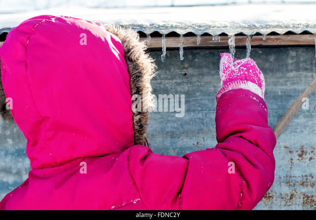 Child in winter picking icicles off of barn - Stock Image