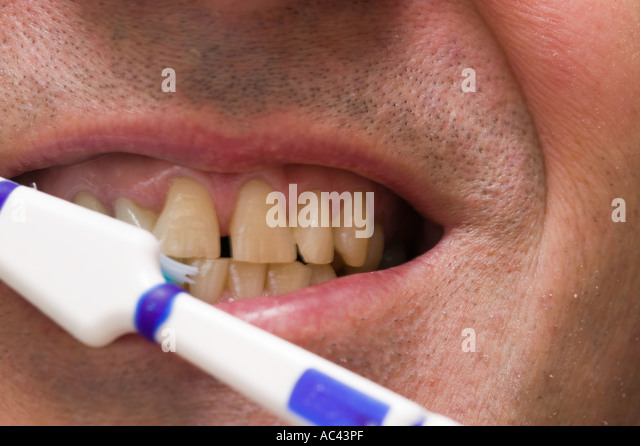 Toothbrush and plastic head stock photos toothbrush and for Blue fish dental
