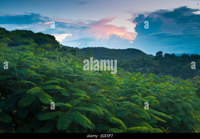 Evening in Las Minas de Tulu in the interior of the Cocle province, Republic of Panama. - Stock-Bilder