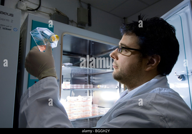 Stem cell research, Max Planck Institute for Molecular Genetics, laboratory technician at incubator with cells, - Stock Image