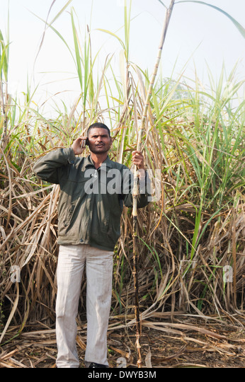 hindu single men in fancy farm Results 1 - 13 of 13  indian single men thousands of photos and profiles of men seeking romance,  love and marriage from india.
