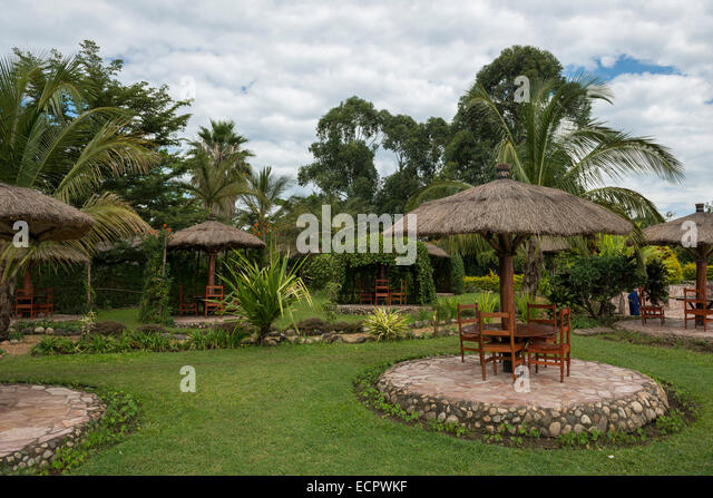 Gardens, Uganda - Stock Image