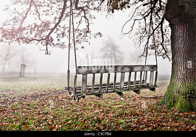 Old Bench Swing in Misty Countryside - Stock Image