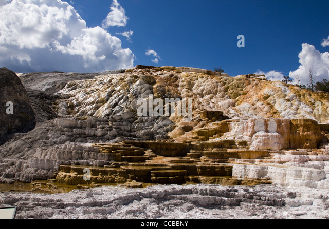 This is one of the terraces at Mammoth Hot Springs In Yellowstone - Stock Image
