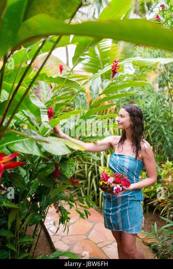 Woman picking fresh flowers from tree, Puerto Escondido, Oaxaca, Mexico - Stock-Bilder