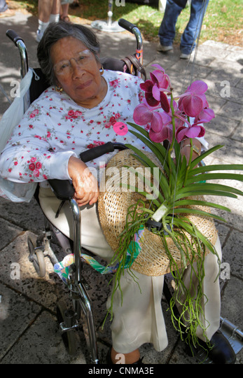 Miami Coral Gables Miami Florida Fairchild Tropical Gardens Orchid Show shopping event senior Hispanic woman disabled - Stock Image