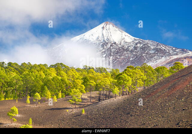 Teide National Park, Tenerife, Canary Islands, Spain - Stock-Bilder