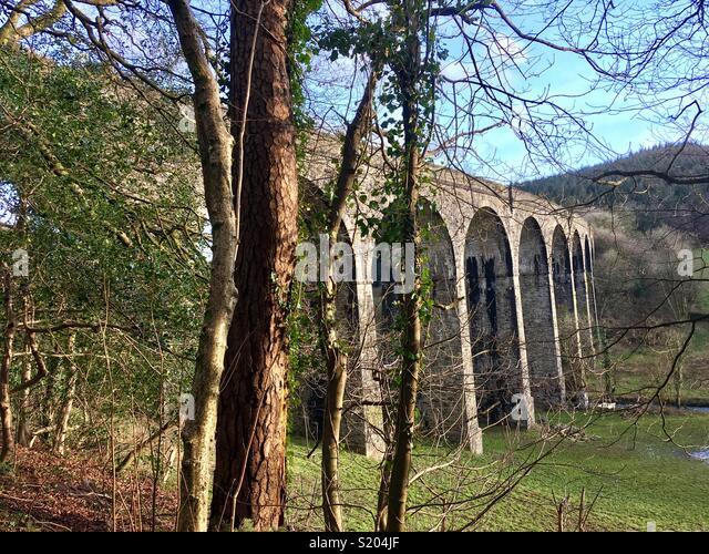 Abandoned railway viaduct between Tavistock and Plymouth, Devon - Stock Image