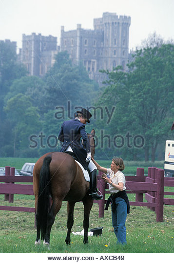 Final grooming at the Royal Windsor Horse Show, UK - Stock Image