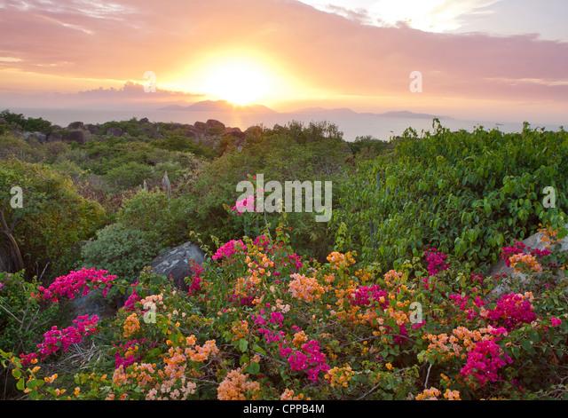 Virgin Gorda, British Virgin Islands, Caribbean: View of setting sun over distant islands in the Caribbean Sea - Stock Image