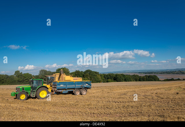 Combine harvester pouring harvested grain into trailer towed by tractor in field on bank of River Severn, Gloucestershire,UK - Stock Image