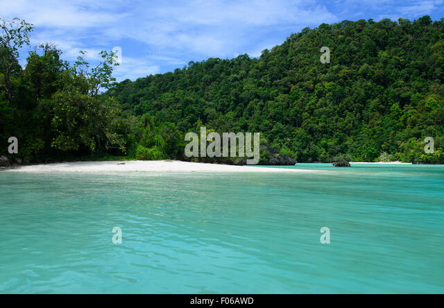 A white sandy beach at the edge of a green jungle on a tropical sea, Mommon, West Papua, Indonesia, Pacific Ocean - Stock Image