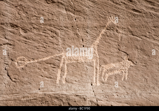Rock-art of giraffe in the Eastern Desert of Egypt, North Africa - Stock Image
