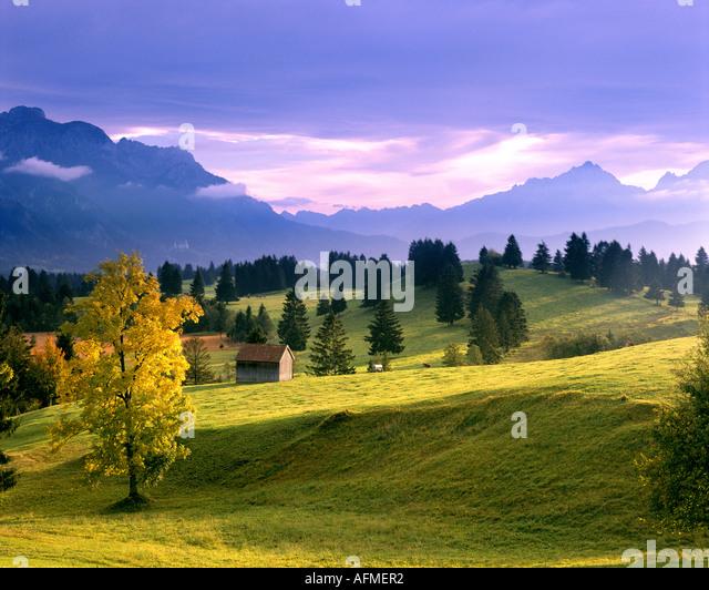 DE - BAVARIA:  Landscape near Trauchgau in the Allgäu - Stock Image