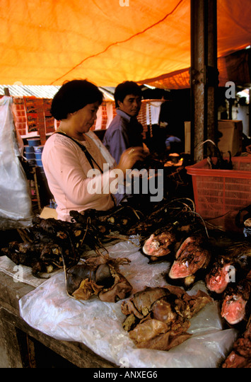 tomohon women The tomohon market in the mountains of north sulawesi, is a traditional market known for selling entirely different types of meat chinese temple the beautifully designed ban hin kiong.