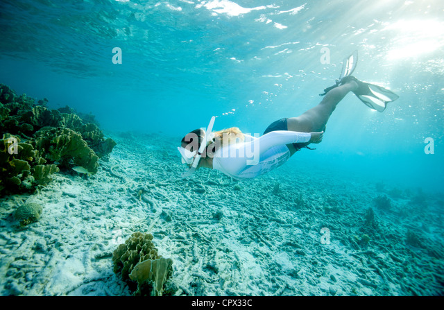 Snorkeler approaches coral reef - Stock Image